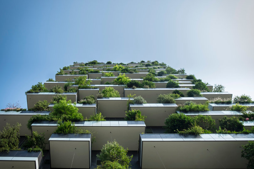 Eco building and vertical forest